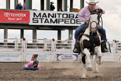 Top Ten Fairs And Exhibitions 2011 Canadian Cowboy