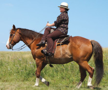 "The secure seat comes from the ""purchase"" of the rider's lower right leg against her horse's left shoulder."