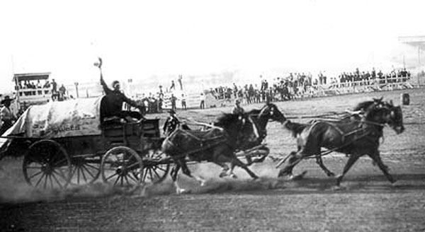 Tom Lauder driving his chuckwagon outfit in 1925 at Edmonton. In the early 1920s Lauder used several Bagley Thoroughbreds in his hitch. Photo courtesy Daryl Drew.