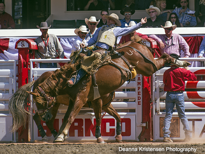 Dustin Flundra scoring an 86.5, aboard the Calgary Stampede horse Until Kamloops on Wildcard Saturday.[