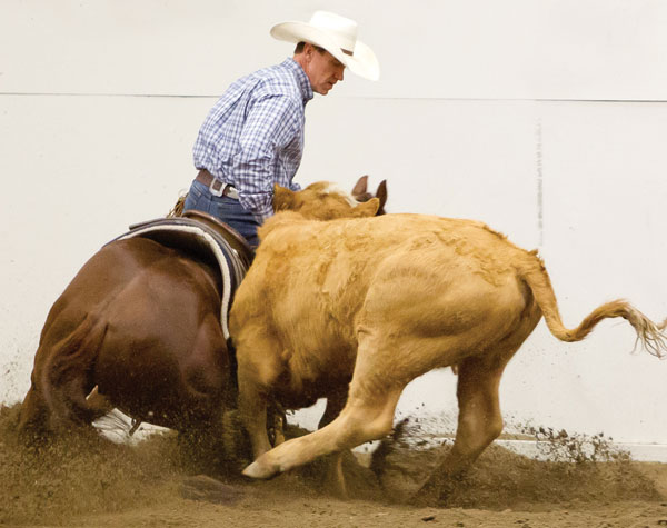 John Swales of Millarville, Alta., on Maximum Echo, owned by Flo Houlton of Caroline, Alta.