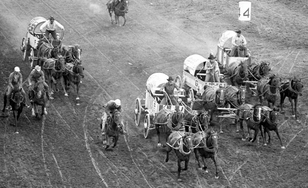 Wagons from the three Western provinces; from left to right: Rupert Fisher driving the Fisher Brothers outfit from Duck Lake, Sask., Tommy Glass driving Barney's Diamond NE outfit from Calgary, Alta., Allen Brown driving Kenn Borek outfit from Dawson Creek, B.C., and Dave Lewis driving Darryl Trottier outfit from Valleyview, Alta.