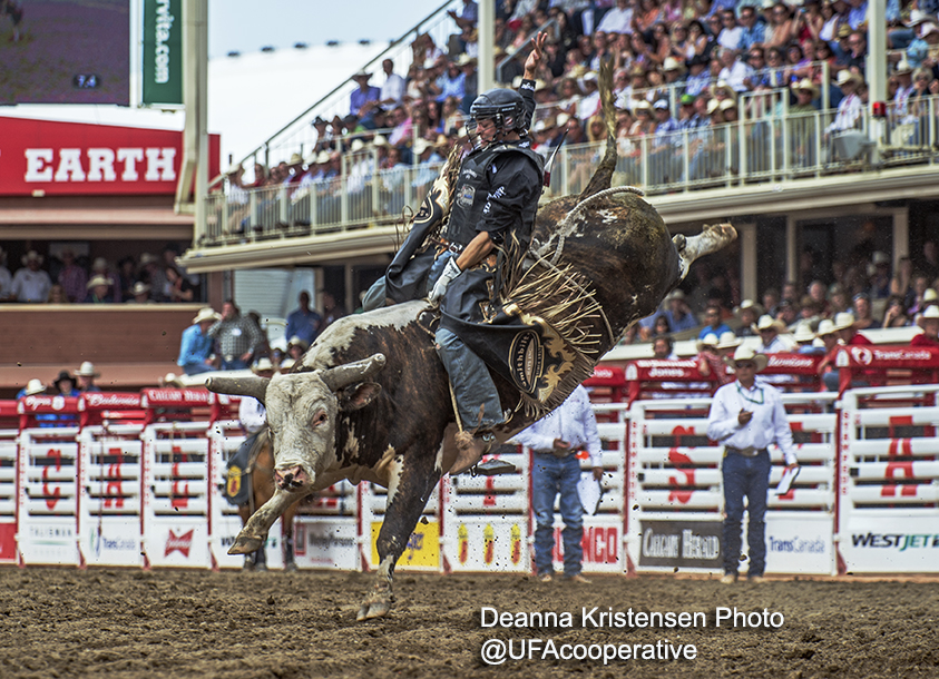 Ty Pozzobon Calgary Stampede