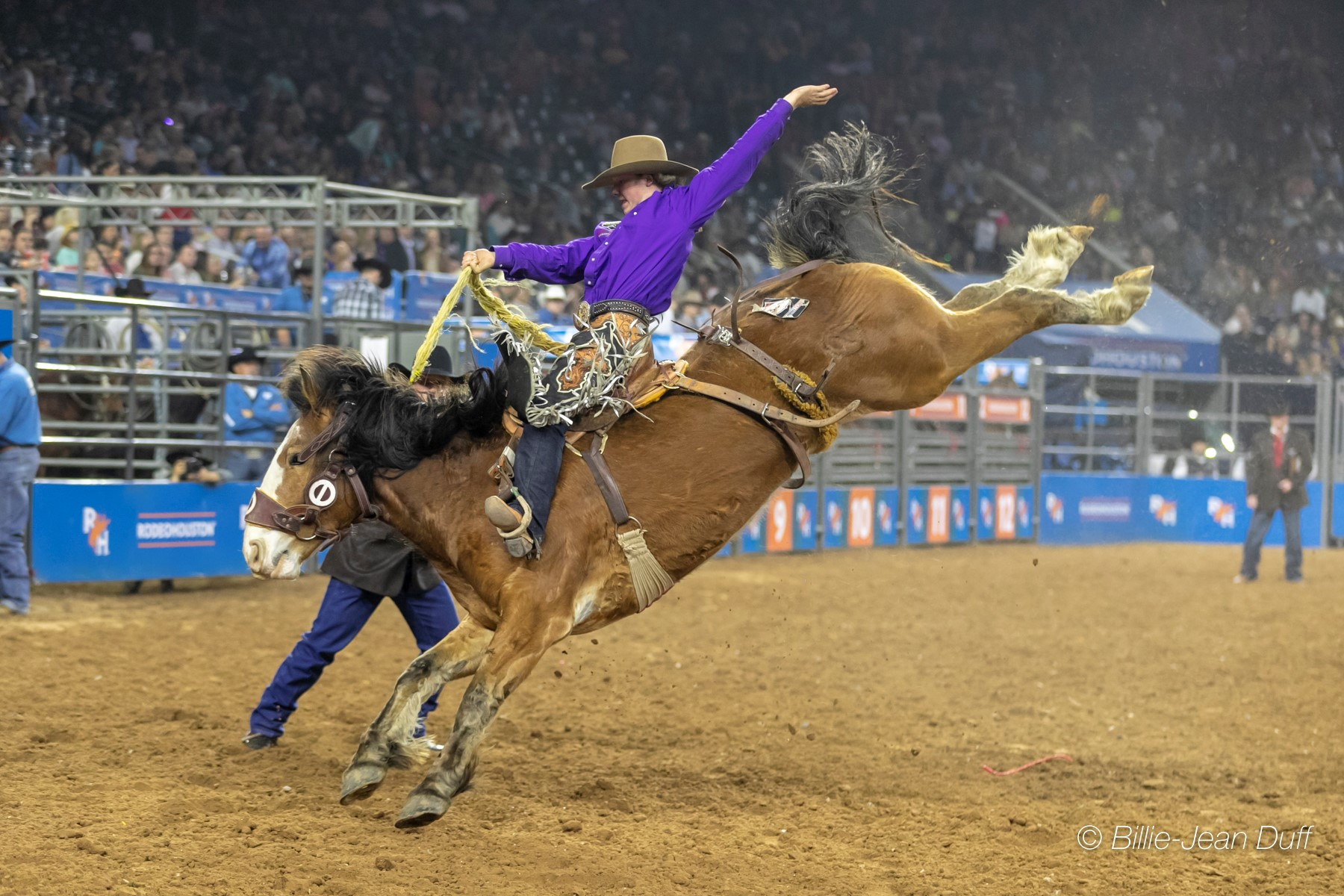 Rodeohouston The Canadians Amp The Wild Card Canadian